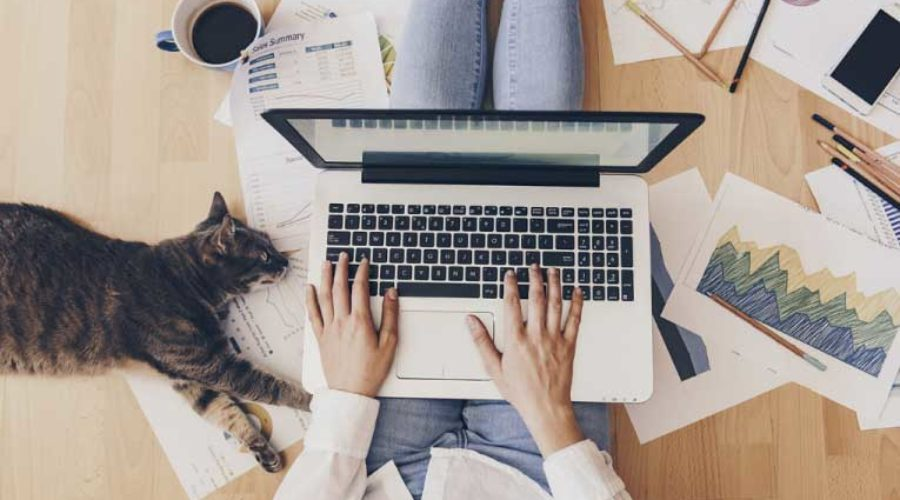 Pro Tips for Working from Home Effectively