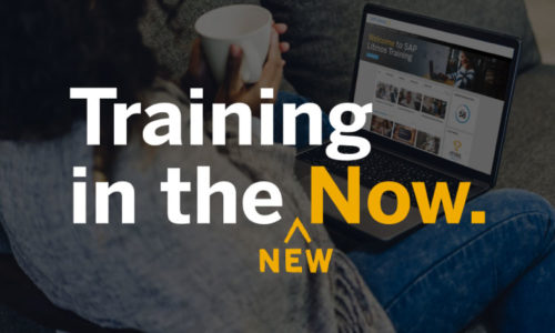training in the new now